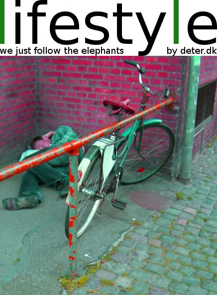 lifestyle - follow the elephants